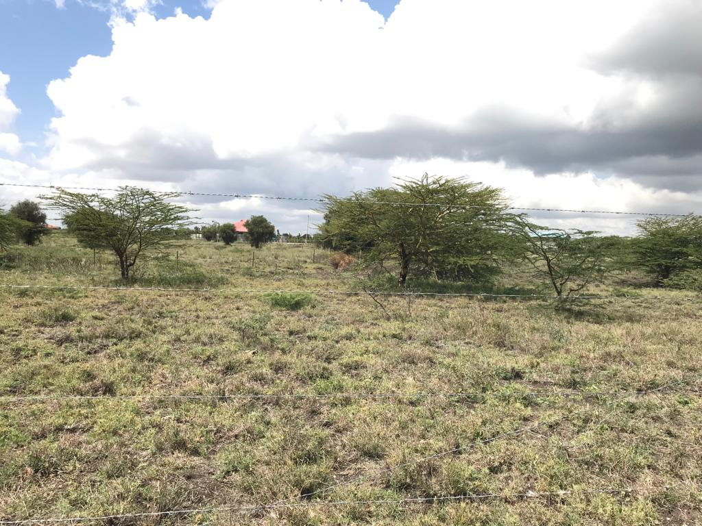 1554212566_Kitengela%20Plots%20for%20Sale%20by%20Afrique%20Properties%209.jpg